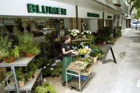 Blumen Maarsen AG  (Switzerland)