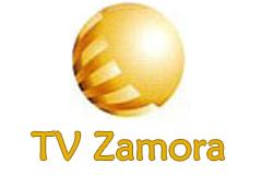TV Zamora (Spain)